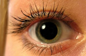 Глазные капли тобрадекс аналог